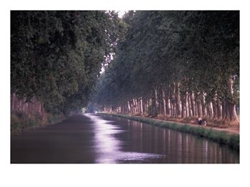 Canal du Midi, Herault, Languedoc, France